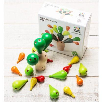cactus equilibristra